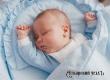 В августе в Аткарском районе родились Лерман, Игнат и Глафира