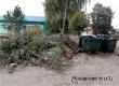 Аткарчане пожаловались на мусор в Общероссийский народный фронт