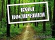 Аткарчанам продлили ограничение на пребывание в лесах