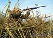 В выходные в Саратовской области стартует летне-осенняя охота