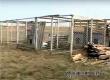 На ТВ рассказали о строительстве приюта для животных в Аткарске