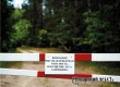 Запрет на посещение лесов для аткарчан продлили до 30 августа