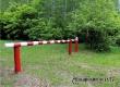 В Аткарском районе вновь продлили запрет на посещение лесов