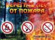 В Аткарском районе продлен запрет на посещение лесов