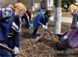 Более 20 сотрудников КЦСОН поучаствовали в городском субботнике