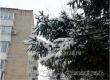 После выходных с морозцем синоптики обещают оттепель с декабрьским дождем