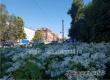 Погода в Аткарске будет жаркой и без осадков