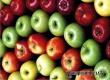 Выводят яды и придают сил – медики пояснили, для чего нужно есть яблоки